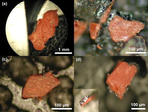 Microfotografias das partículas vermelhas/cinzentas das amostras 1-4 do pó do WTC envolvidas no teste, (a)-(d), respectivamente.